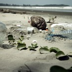 Bali will be free of plastic waste by 2013