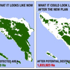 aceh-forest-map