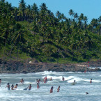 How Surfing Could Save The Rainforest