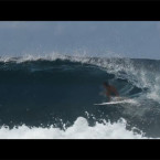 Video: Shaun Cansdell North West Indo