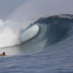 Photos: 2014 Season Mentawai Appetizer