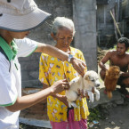 Mass Vaccination for Stray and Pet Dogs