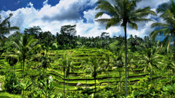 Bali Is More Than Beaches