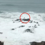 Video: Surfer Wiping Out On A Reef at Cornwall