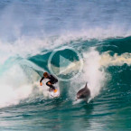 Video: Soli Bailey Gets Snaked By Dolphin