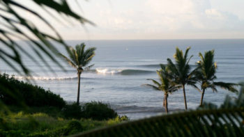 American Surfer Attacked By Shark in Balian Beach, Bali