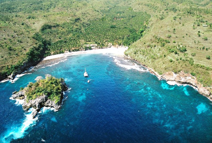 Alarming and Sudden Increase in Bleached, Dying Coral Reefs at Nusa Penida and Sanur in Bali