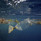 Plane Search Shows World's Oceans Are Full of Trash