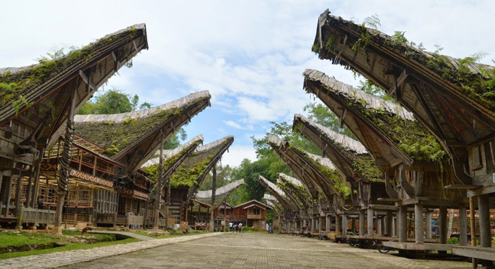 Traditional-House-of-Tana-Toraja-South-Sulawesi-1024x558