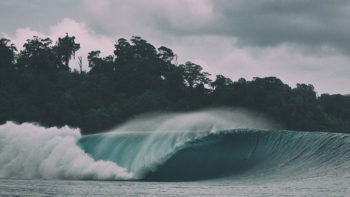 New Surfer Tax In Mentawai Islands