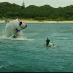Surfers vs Shark: Movie Industry Playing Fear