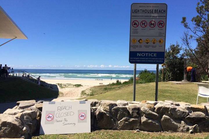 Teenage Surfer Attacked by Shark at Ballina's Lighthouse Beach