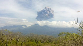 333 Foreign and 56 Domestic Tourists Trapped After Mt. Barujari Eruption