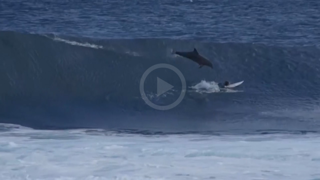 Video: WA Grom Get Smoked by a Flying Dolphin