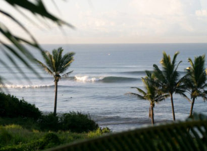 Australian Surfer Injured Allegedly Shark Attack at Balian Beach, Bali