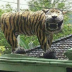 Indonesian Army Destroys Much-mocked Tiger Statue