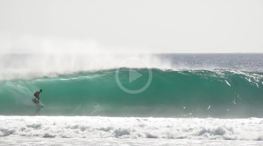 Video: Indo Is Pumping