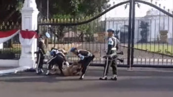 Naked Man Tries to Enter Indonesian Presidential Palace